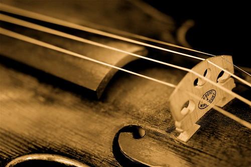 My Violin - 無料写真検索fotoq