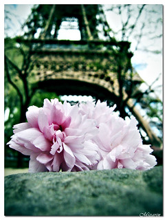 Love in Tour Eiffel