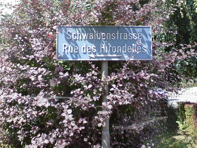 Schwalbenstrasse