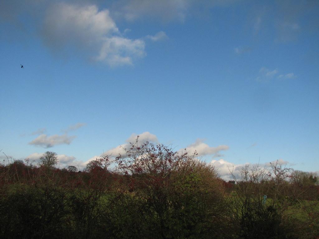 Wolken, blauer Himmel, grüne Wiesen und viel Natur: das ist Irlands Szenerie. Für die richtige Musik sorgen die Iren selbst.