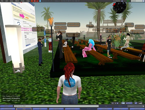 Facebook-SecondLife