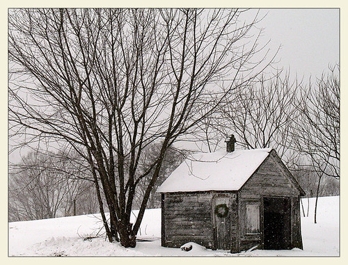 snow ny newyork bainbridge aswpix isawyoufirst