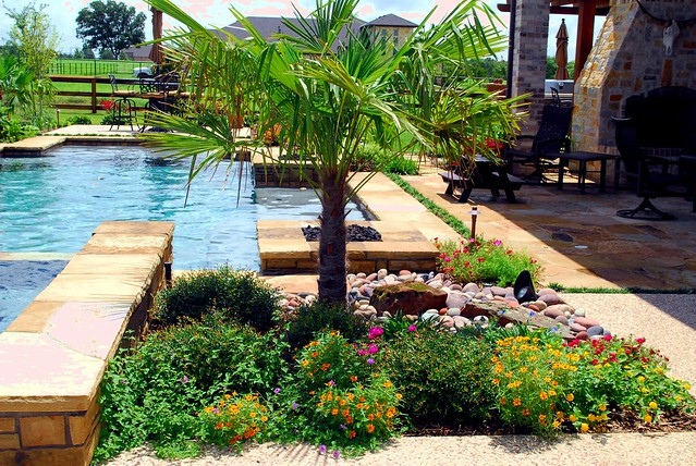 Landscape Boulders Dallas Tx : Sustainable plants around a pool lewisville flickr photo sharing