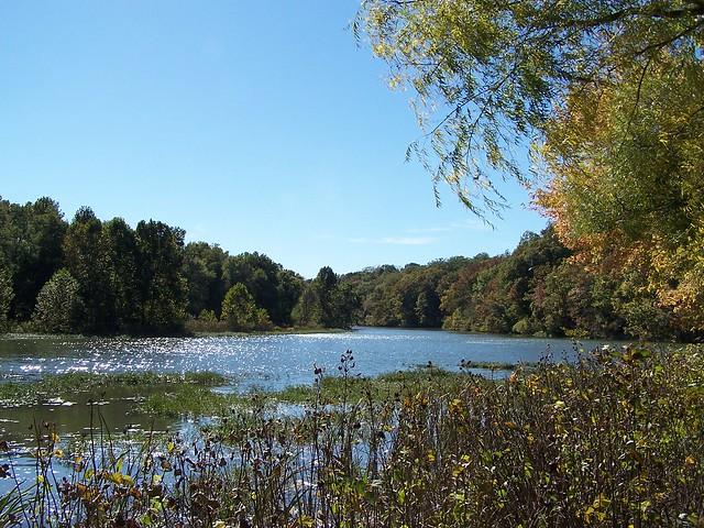 Springfield Nature Center Springfield Mo