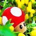 Toad in Yellow Pepper Kingdom by Omar Junior