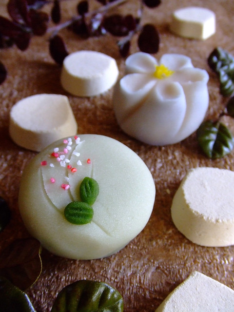 October Wagashi, Fujifilm FinePix Z2