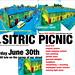 SITRIC PICNIC 2007