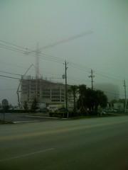 Foggy Tampa Bay