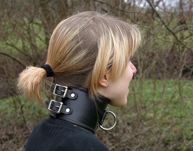 Wide Collar   Flickr - Photo Sharing!