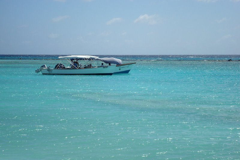 Archipelago Los Roques Is Home To Diverse Sea Life
