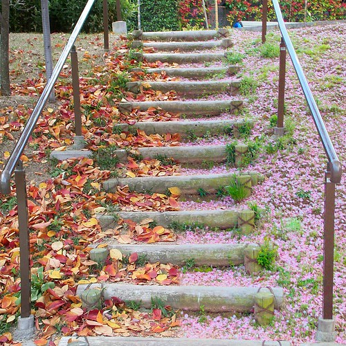 steps in seasonal colors - Autumn and Spring