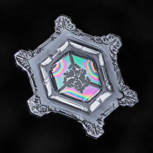 Snowflake-a-Day #49