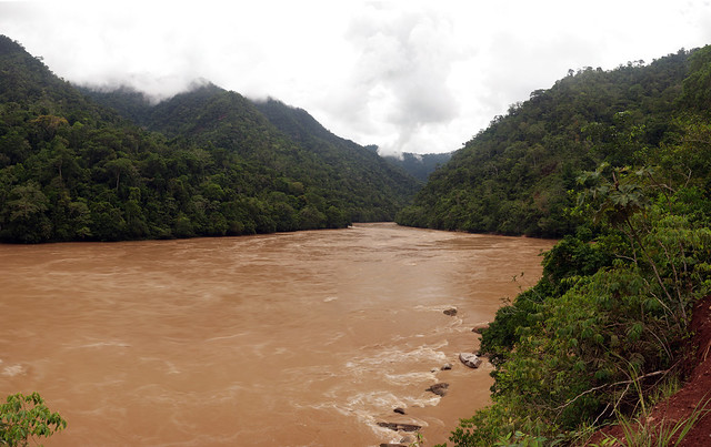 Ucayali River  Peru looking east at Pongo de AguirreUcayali River