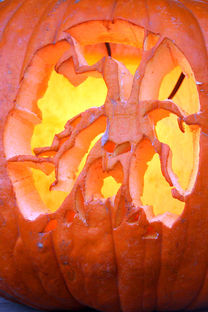 Pumpkin with spooky tree carving flickr photo sharing