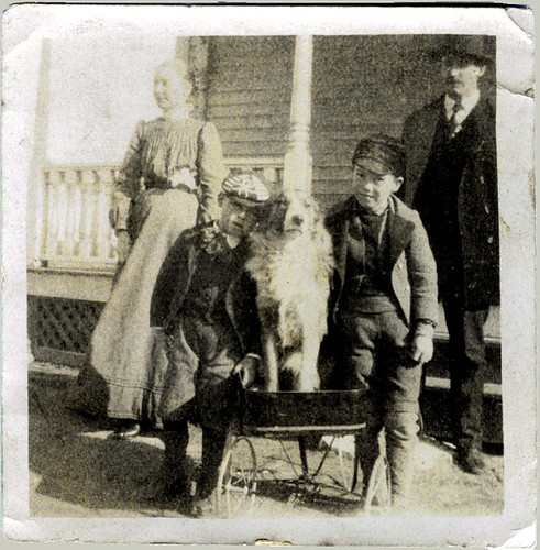 Dad, mom, two boys and the dog
