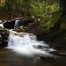 Fallsway Flow by Jim Salge
