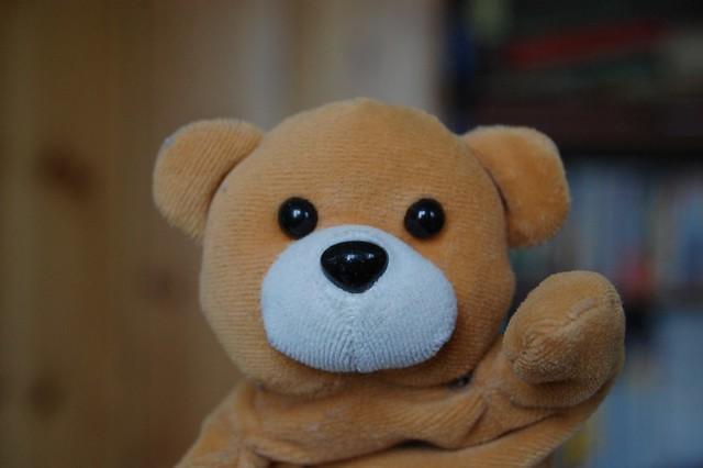 teddy I - goodbye
