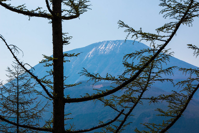 20150425-鳴虫山-0324.jpg