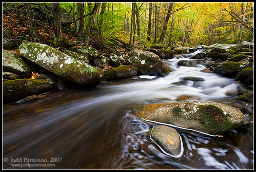 Smokies Stream Shot #1