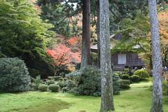 Sanzenin Temple, Ohara, Kyoto, Japan