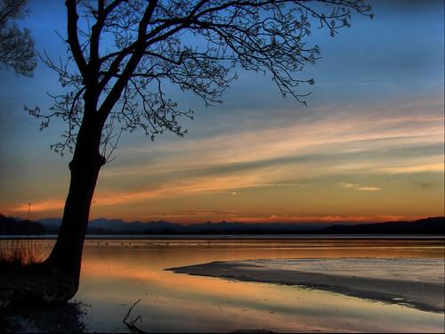 winter sunset lake alps tree ice bayern bavaria see sonnenuntergang pilsen alpen eis baum abigfave aplusphoto superbmasterpiece megashot naturessilhouettes