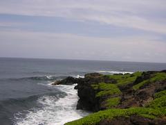 Maui 2005 100