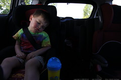 asleep in the car, on the way home from a long day