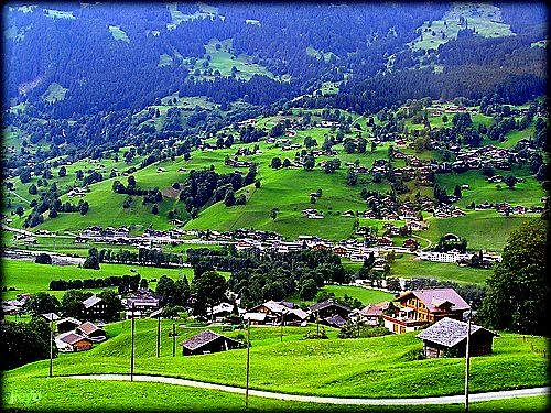 Green in Swiss