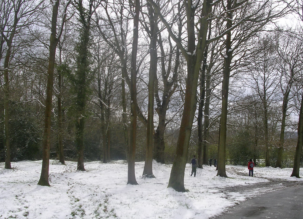 A Bruegel moment Haslemere Circular (silent walk)