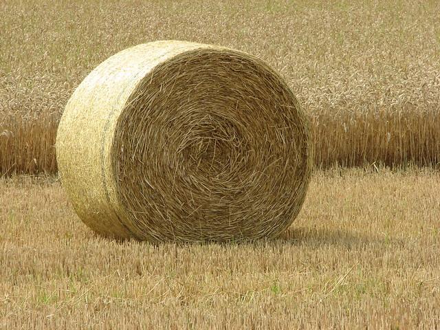 Watch more like Hay Bales