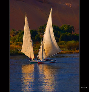 0100 Feluccas in the Nile