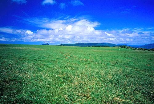 T537屏東滿州大草原