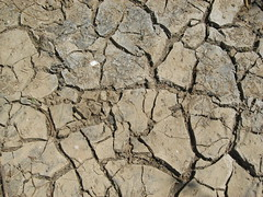 soil, drought,