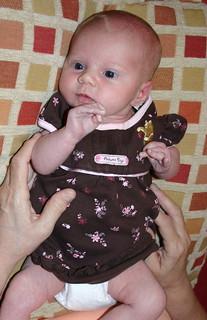 Maddie 2 1/2 weeks
