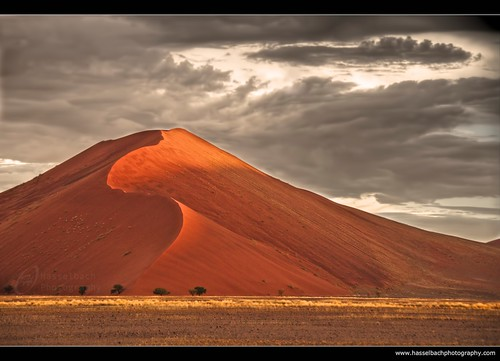 Namibia Red Dune