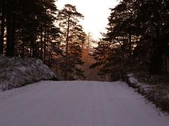 Erkylä Winter - Erkylän talvi