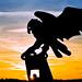 Eagle Sunrise by tsheets