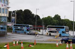 Same bus design - different liveries (September 2016)