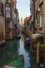 Canals Maze