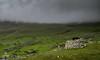 St Kildan Mist