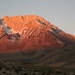 Small photo of Dawn alpenglow in the Sierra Nevada