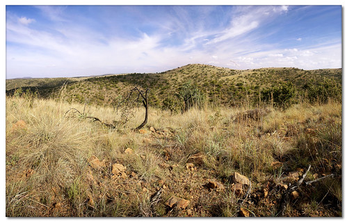 panorama searchthebest soe limpopo novideo naturesfinest nohdr shieldofexcellence waterberggamereserve