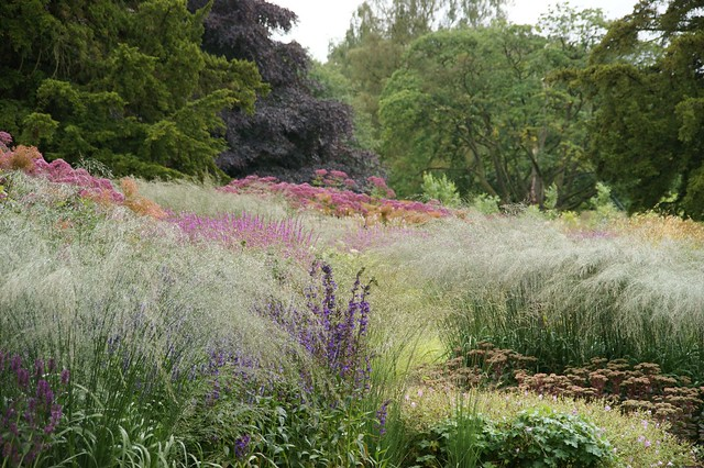 Trentham piet oudolf flickr photo sharing for Landscapes in landscapes piet oudolf