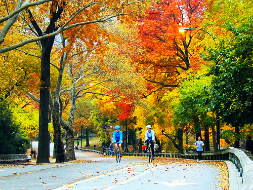 Central Park, NYC Fall, Bike Riding