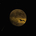 Lunar meteorites by B℮n