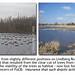 Contrast & Compare | Habitat Loss