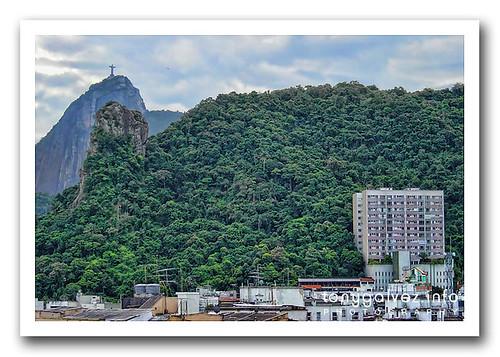 dengue fever epidemic declared in Rio de Janeiro, no need to panic