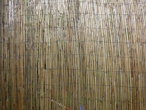 Du japon dans un jardin un brise vue en bambou - Bambou brise vue ...