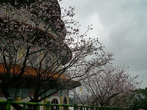 20140309-台北天元宮 (59)