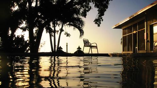 ocean trees sunset sky reflection tree water pool silhouette keys chair key amy florida dusk ripple dive case palm resort refraction fl largo waterproof slates 5photosaday amoray canonpowershotsd850is wpdc15